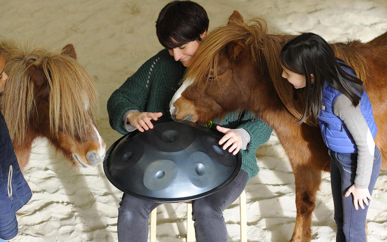 Classe de découverte équitation