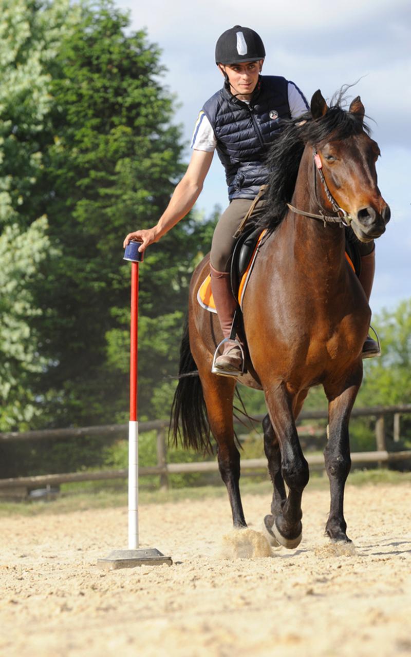 jeux équitation