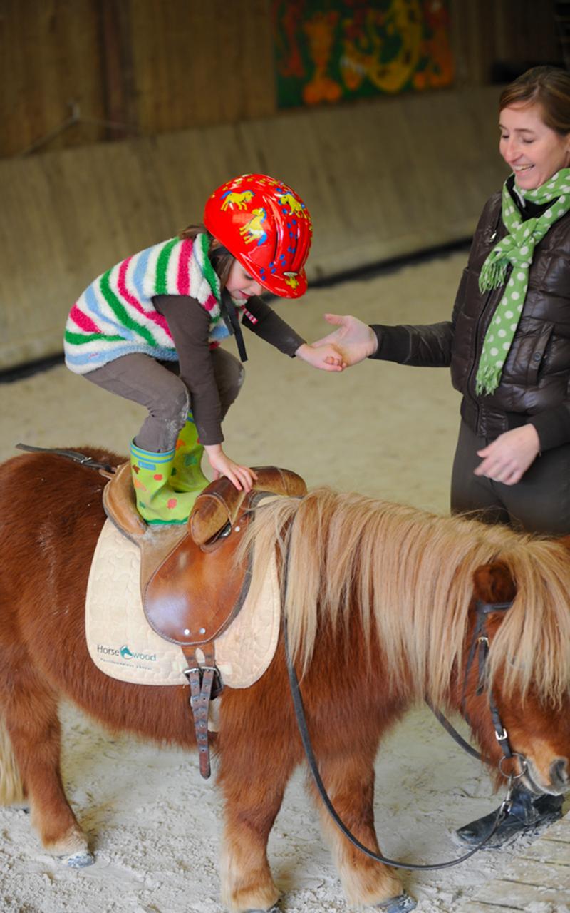 Stages équitation enfant