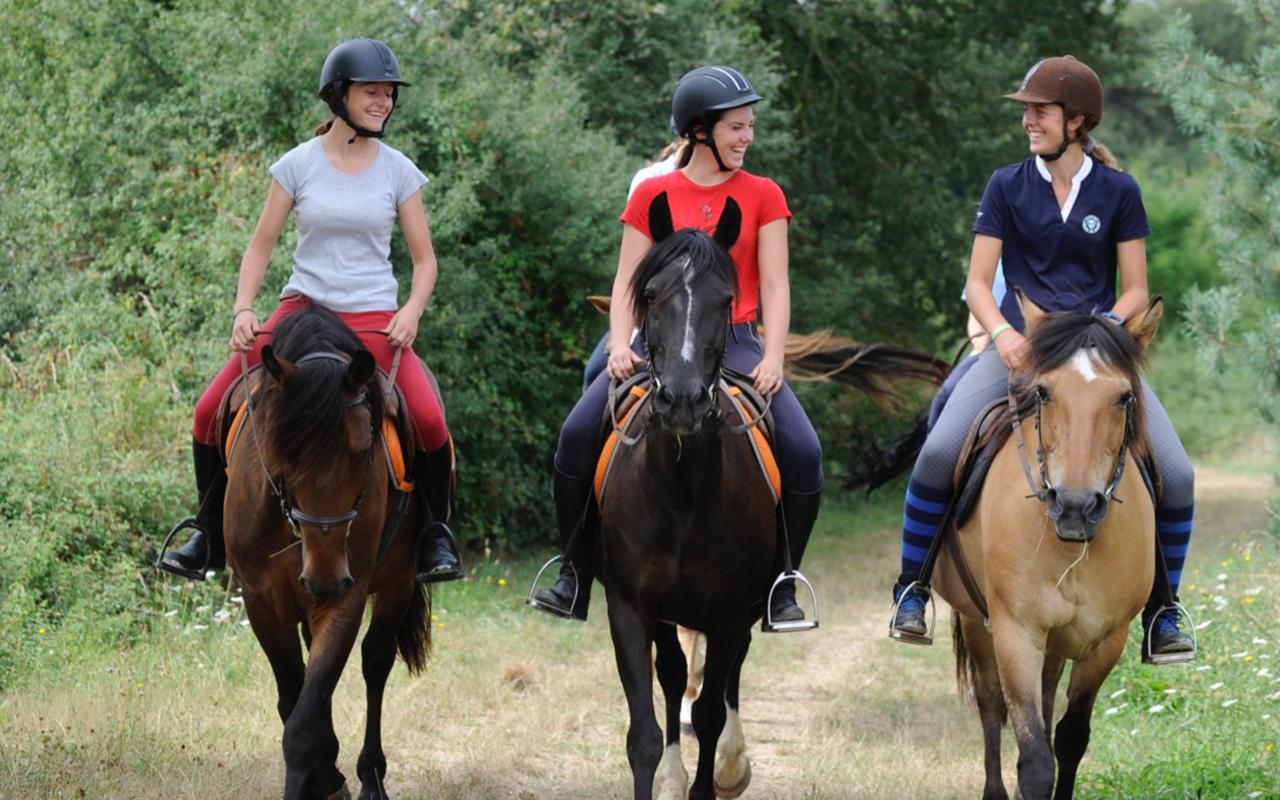 demi-journees équitation balade