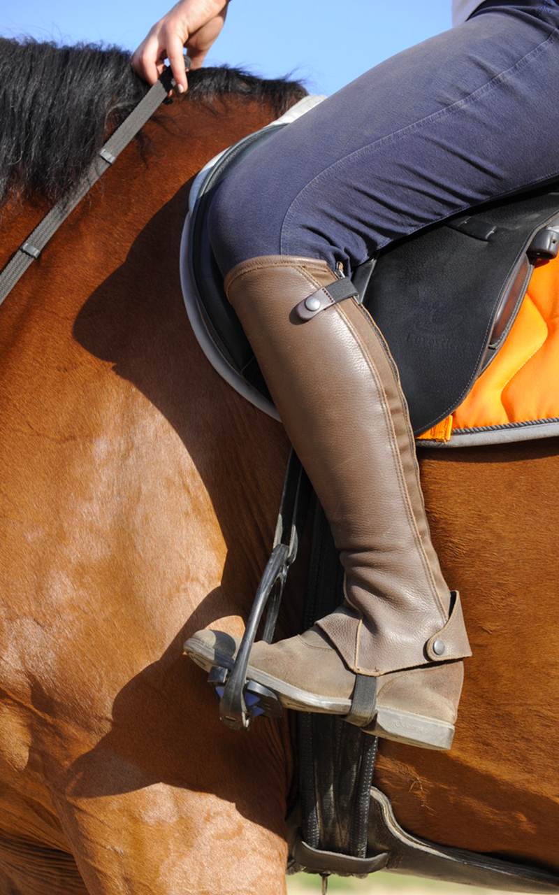 demi-journees équitation