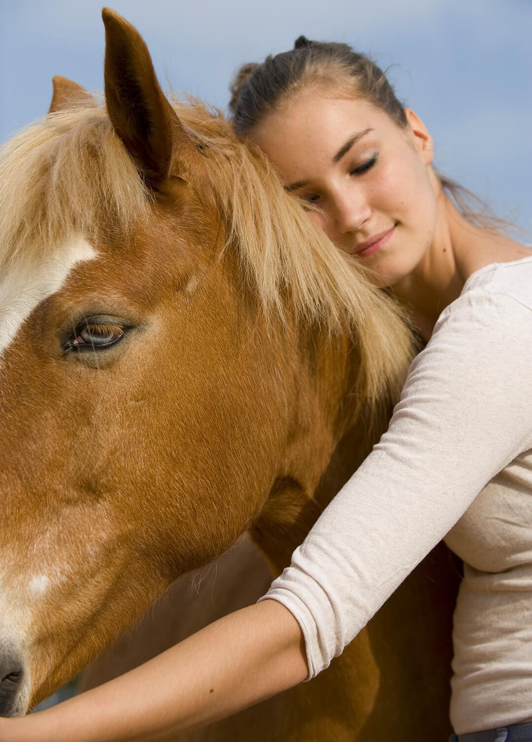 aimer le cheval