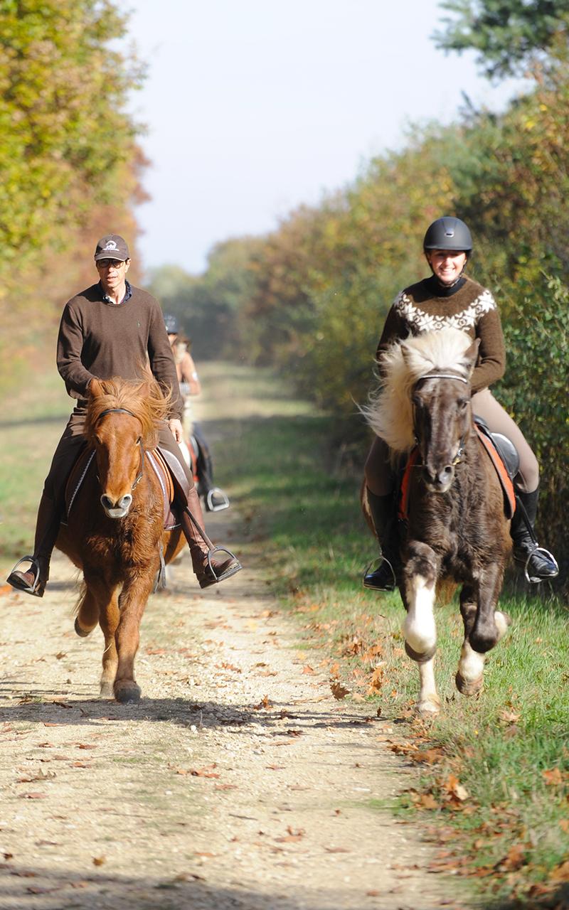 randonnée équitation