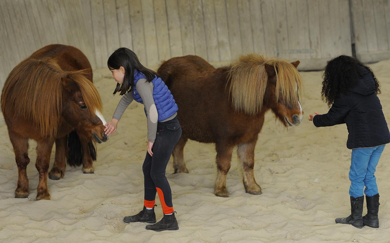 Equitation Naturelle enfant